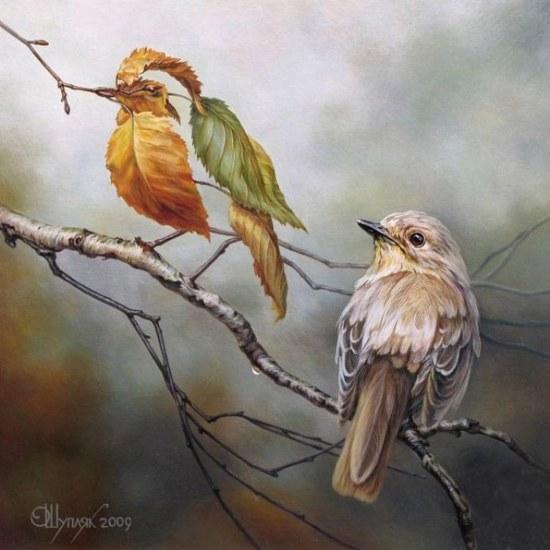 Oleg Shuplyak Birds